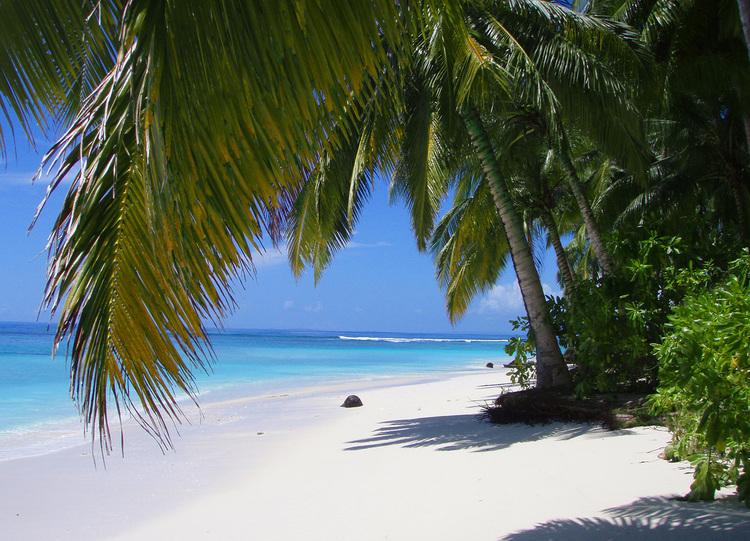 The+Beach+Botik+Resort+Mentawais3